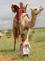 90px-Little_boy_leading_camel